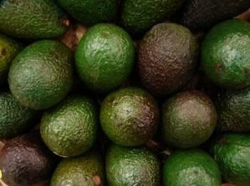 fruit-avocado_2392904.jpg